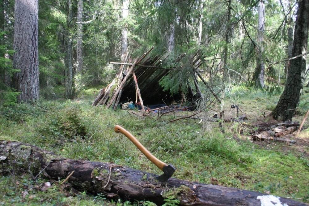 Hut - bushcraft house.